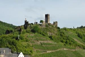 Des vignes et des châteaux partout !