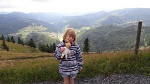 Presque au sommet du Belchen