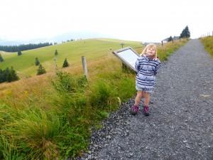 Sur le chemin du sommet du Belchen (1 414 m)